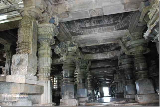 48 pillar, each one unique