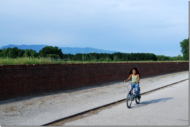 Bycycling the Lucca ramparts