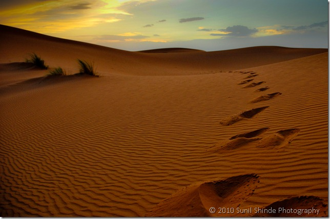 The sands of Sahara