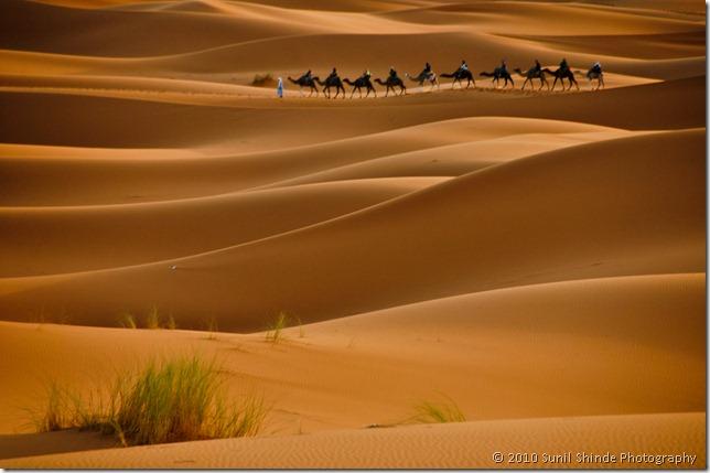 A caravan in Sahara