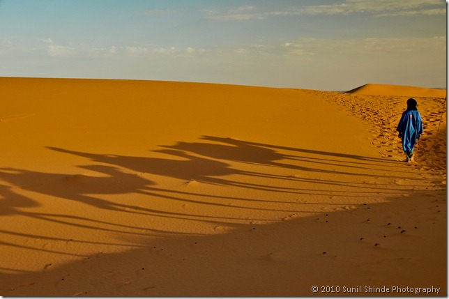 Sahara in the morning