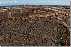 Petroglyphs at Pu'u Loa, Volcano National Park, Hawai'i