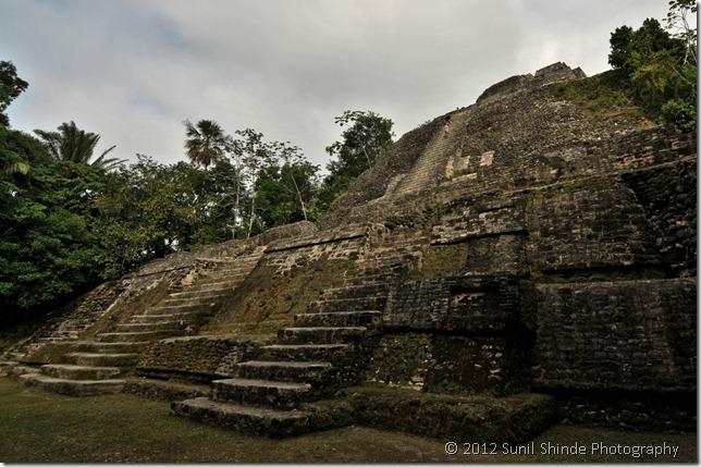 10-43 Mayan High Temple, Lamanai, Belize