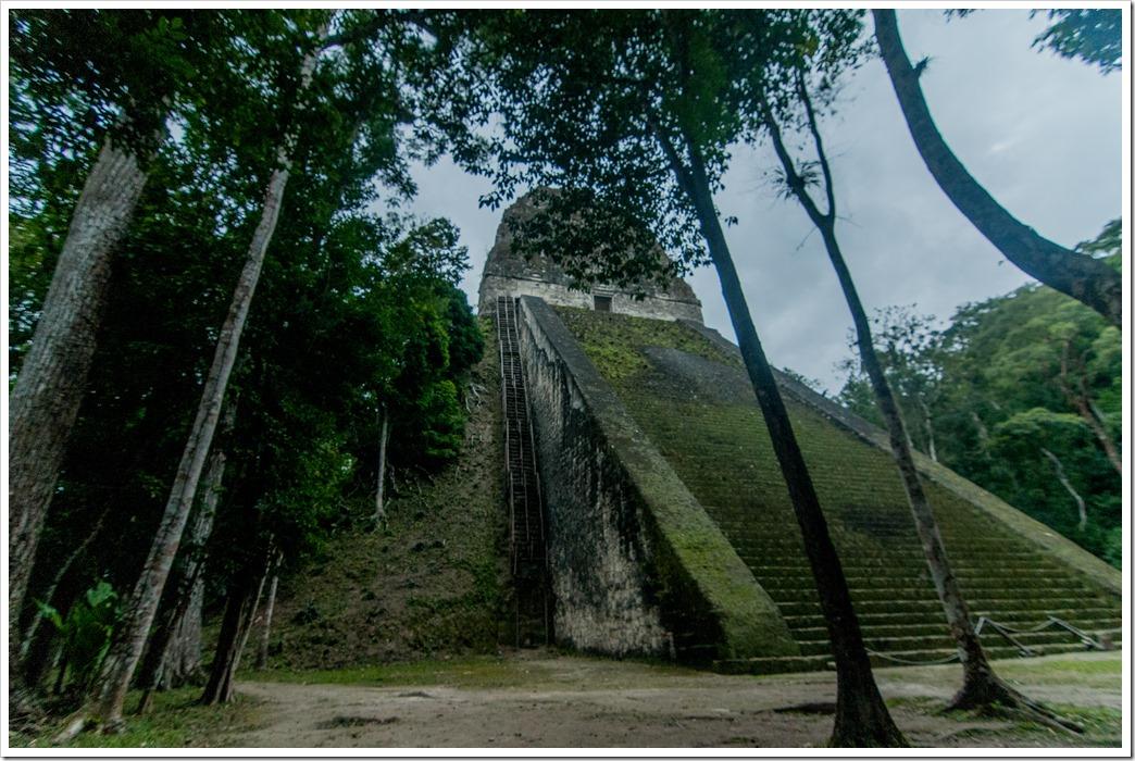 028 Temple V Ruins at Tikal National Park, Gutemala