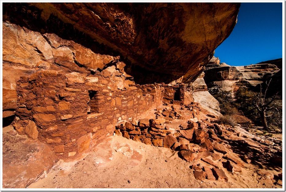 Principle Anasazi ruins in Natural Bridges National Monument